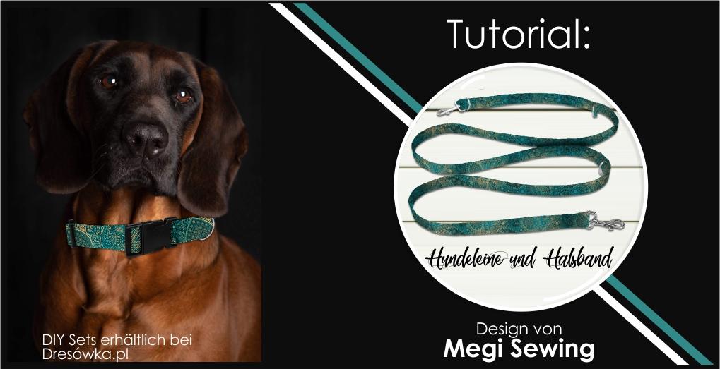 Hundeleine und Halsband DIY Nähset